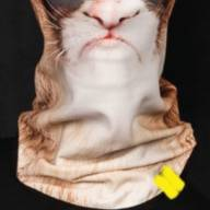 Bandana Original Grumpy Cat - Bandana Original Grumpy Cat